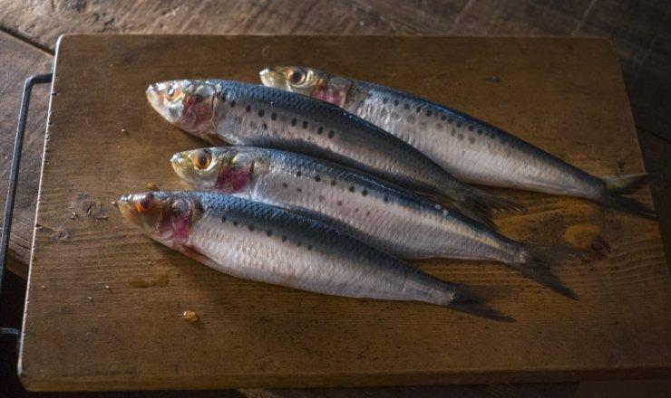 まな板の上の魚